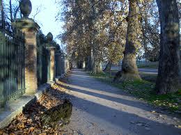 Calle de la Reina de Aranjuez