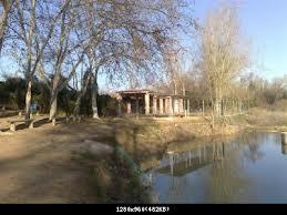 Gangos de Aranjuez